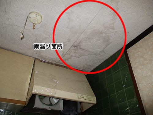 天井シミ箇所